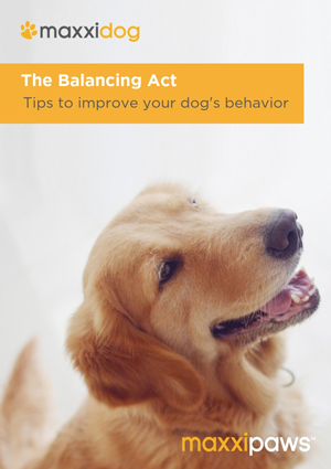 maxxicalm eBook with practical dog behavior tips